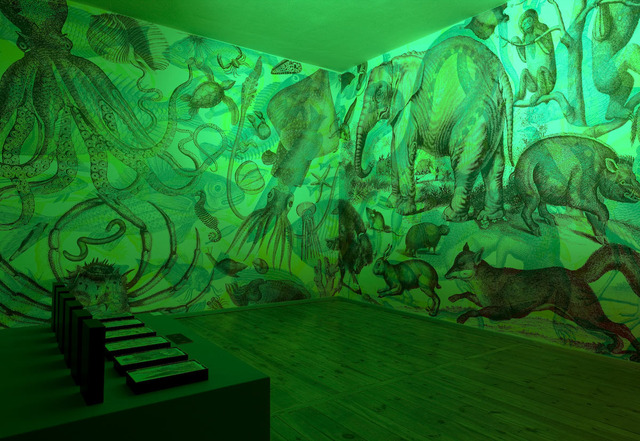 RGB Murals Use Colored Light Filters To Create Beautiful Optical Illusions 3